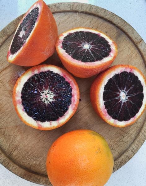 Killer Blood Orange Margaritas