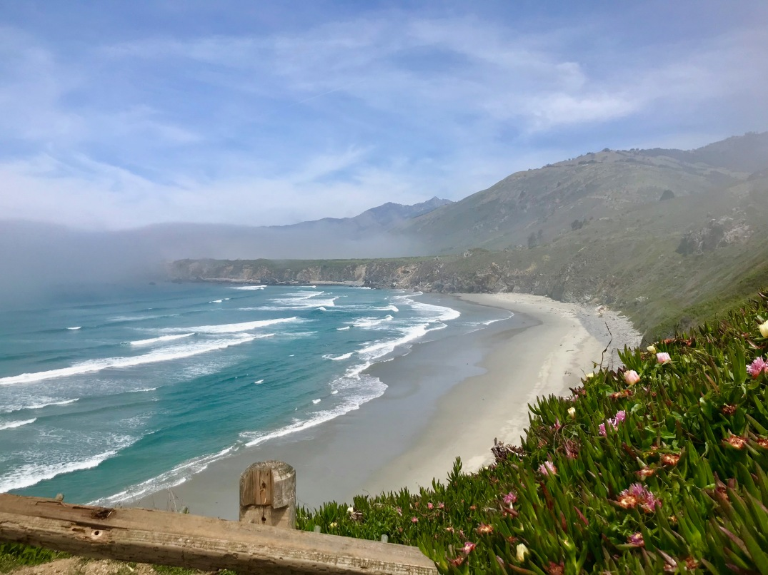 Springtime in Big Sur